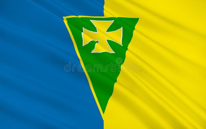 罗斯康芒郡旗子是一个县在爱尔兰 库存例证