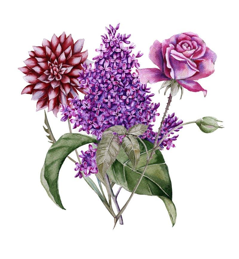 罗斯开花与芽、丁香和大丽花 背景查出的白色 向量例证
