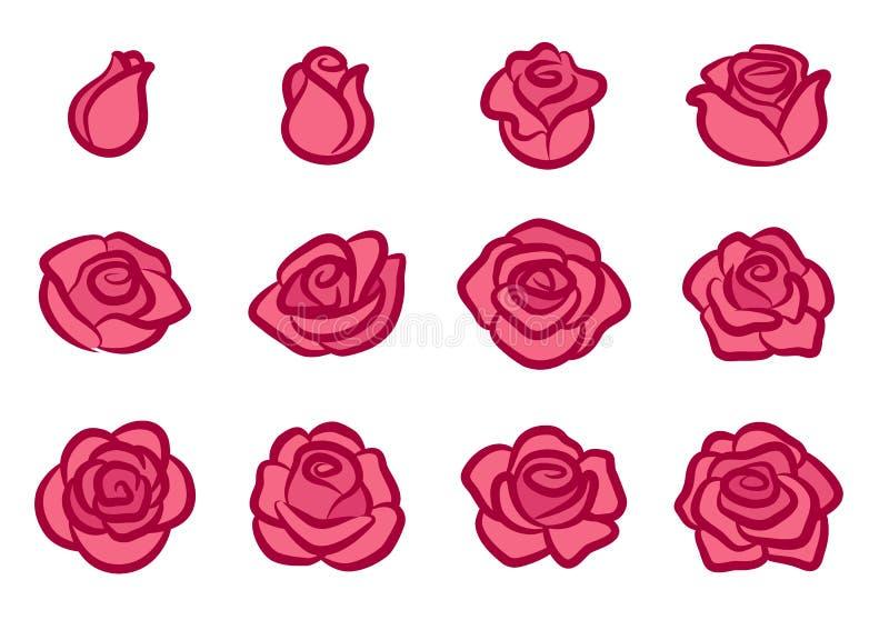 罗斯开花象集合 简单的桃红色和红色玫瑰色花设计元素为情人节,爱,自然,从事园艺的题材 皇族释放例证