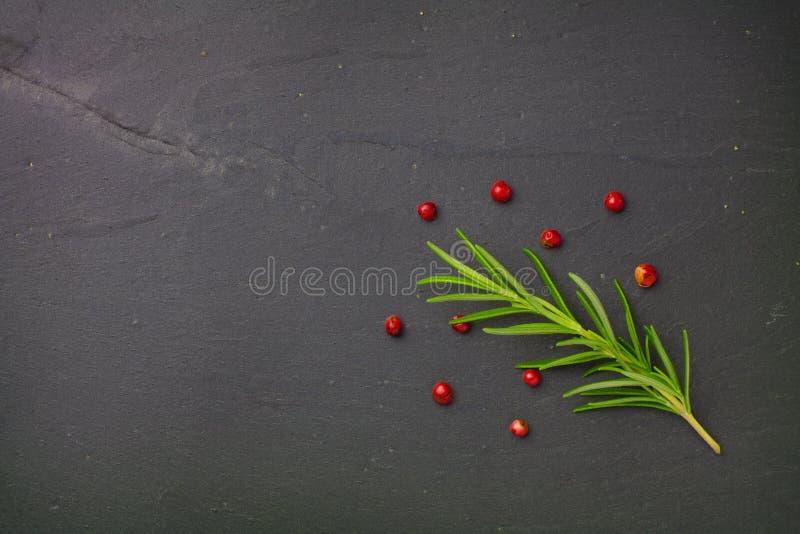 罗斯玛丽和红辣椒种子 库存图片