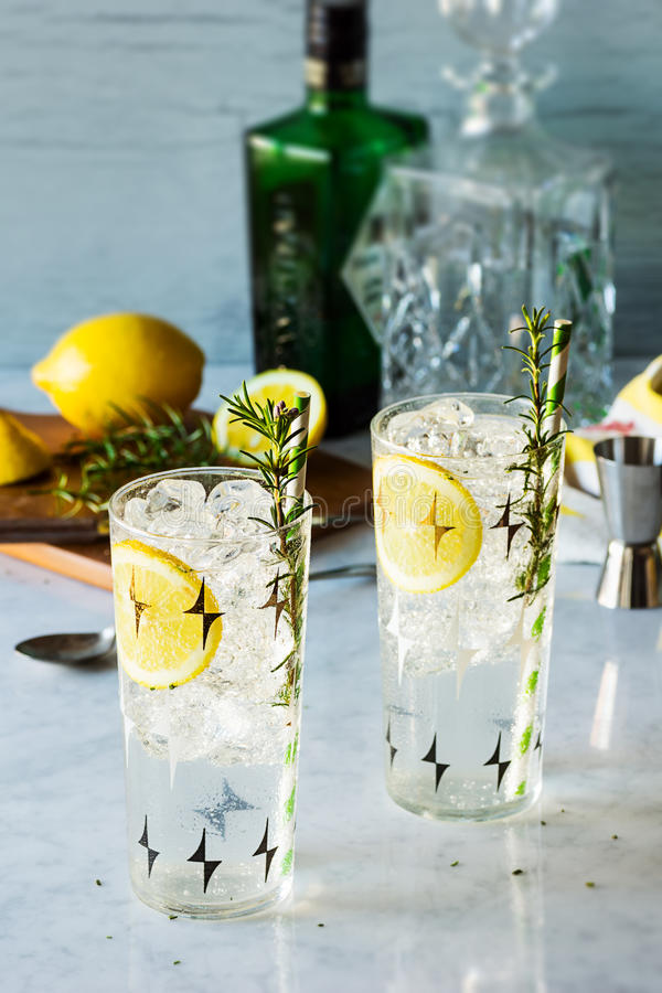 罗斯玛丽柠檬杜松子酒嘶嘶响酒客鸡尾酒 免版税库存图片