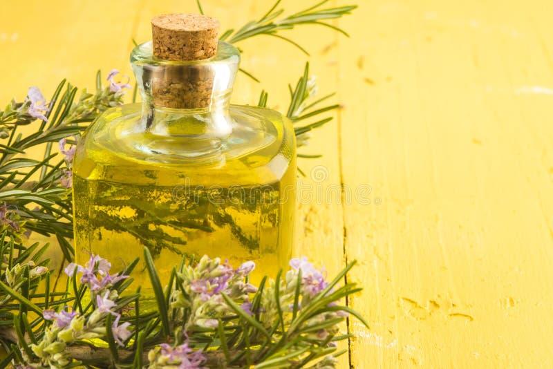 罗斯玛丽精油瓶和植物 免版税库存图片