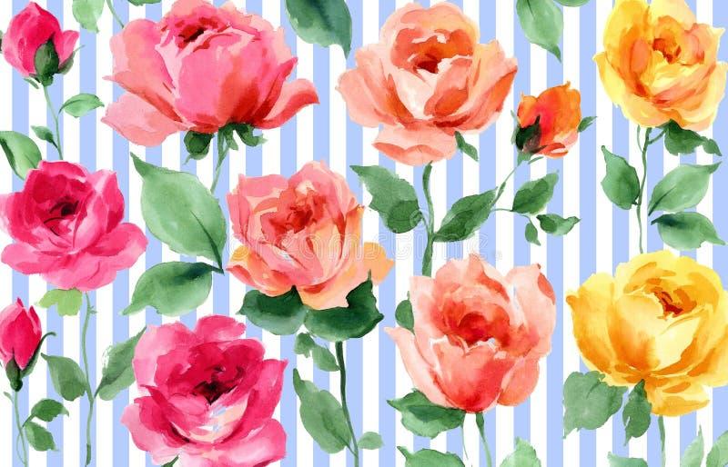 罗斯花开花条纹水彩无缝的墙纸 库存例证