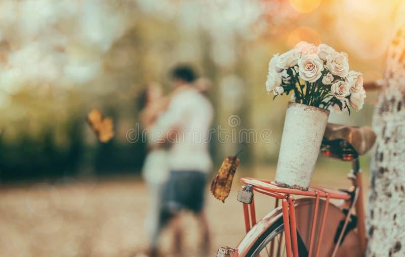 罗斯骑着自行车 库存照片