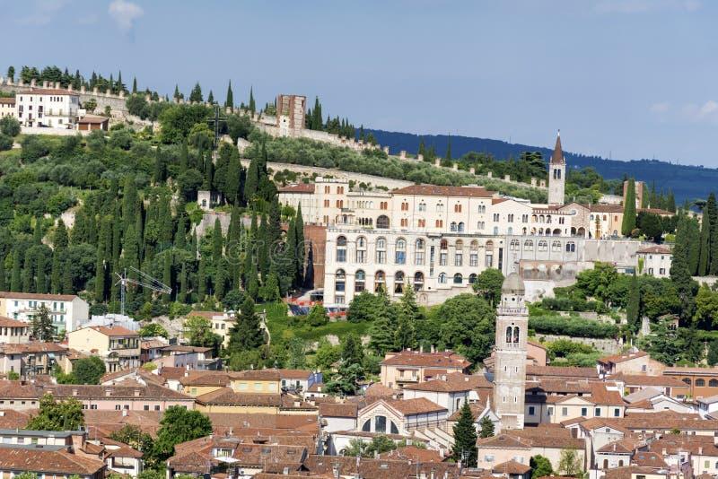 维罗纳视图从上面-意大利 免版税库存照片