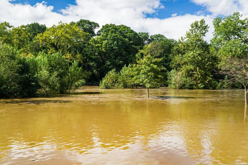 罗阿诺克河的上涨的水 免版税库存照片