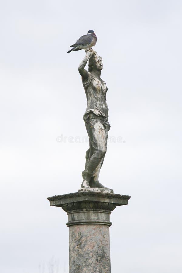 罗马女神金星在卢森堡公园,巴黎,法国的雕象 免版税库存照片