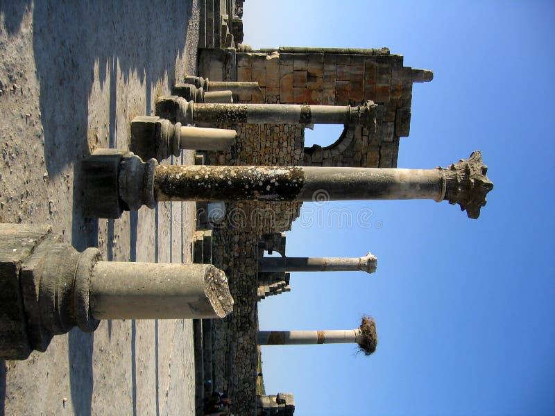 罗马寺庙volubilis 免版税图库摄影