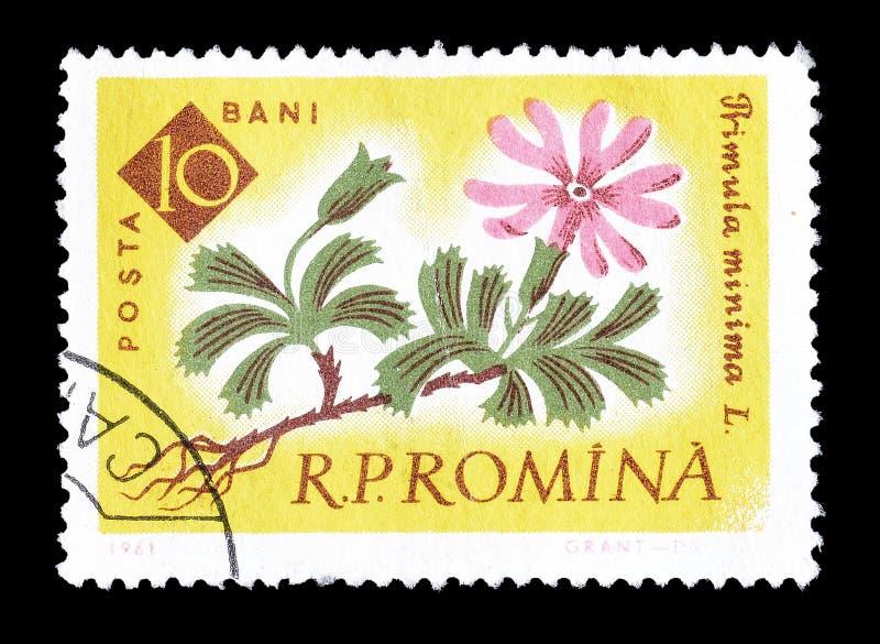 罗马尼亚打印的邮票 图库摄影