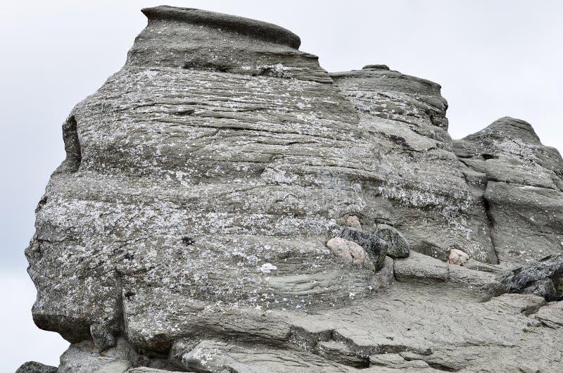 罗马尼亚狮身人面象,地质现象通过侵蚀, Bucegi山形成了 免版税库存图片