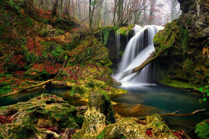 罗马尼亚美丽的风景瀑布在森林和自然Cheile Nerei自然公园里 免版税库存图片