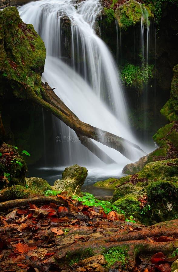 罗马尼亚美丽的风景瀑布在森林和自然Cheile Nerei自然公园里 库存照片