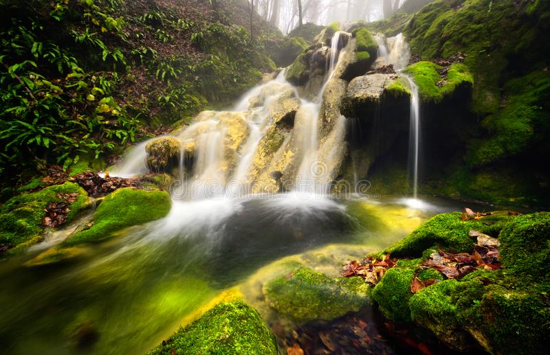 罗马尼亚美丽的风景瀑布在森林和自然Cheile Nerei自然公园里 免版税库存照片