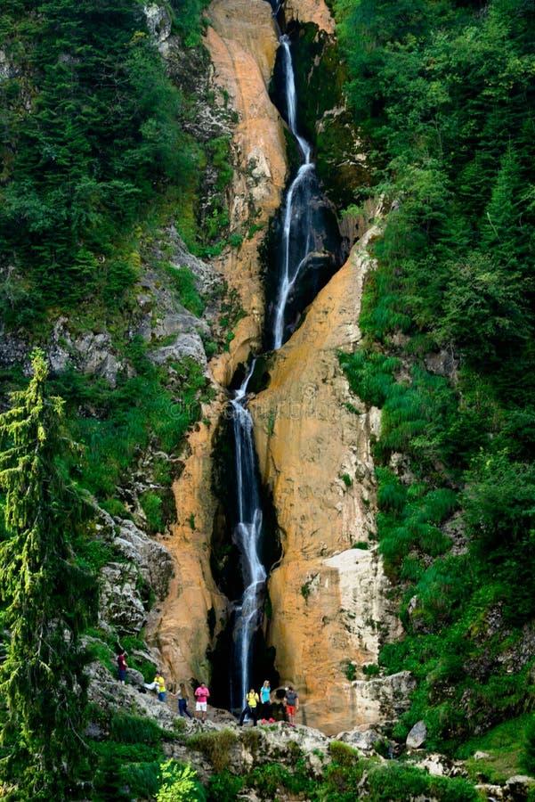 罗马尼亚美丽的风景瀑布在森林和自然Cheile Nerei自然公园里 图库摄影