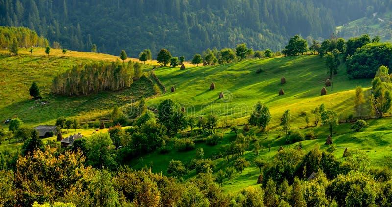 罗马尼亚, Apuseni山在春天,传统房子 库存照片