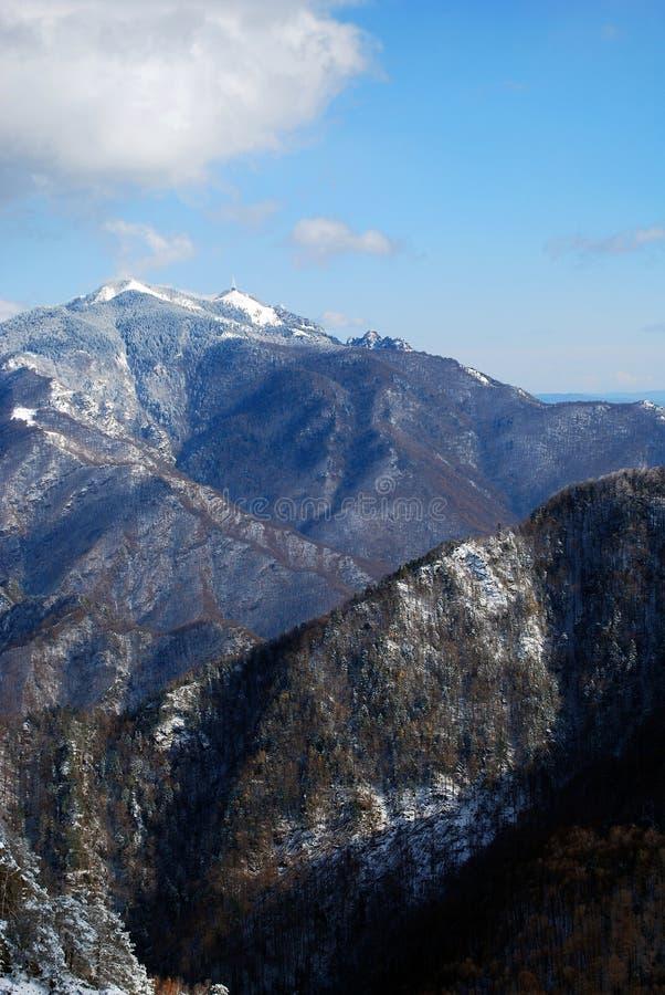 罗马尼亚- Cozia山 库存照片