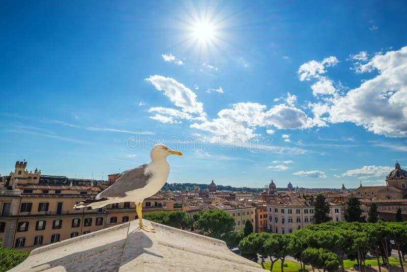 罗马市地平线-意大利 免版税库存图片
