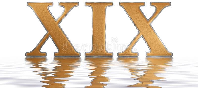 罗马数字XIX, undeviginti, 19,十九,反射在w 皇族释放例证