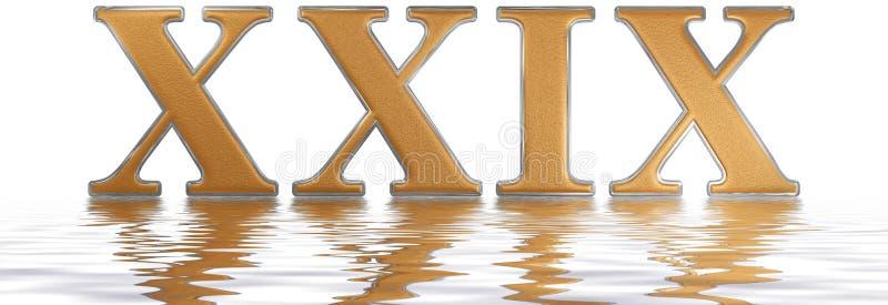 罗马数字XXIX, novem和viginti, 29,二十九,被反射 向量例证