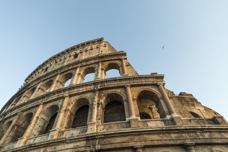 罗马斗兽场的外部在罗马 库存图片