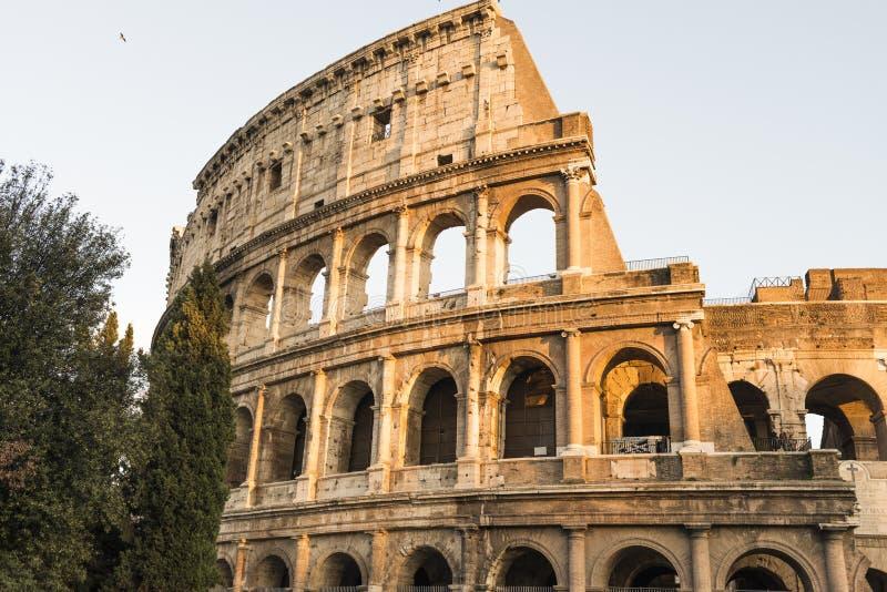 罗马斗兽场的外部在罗马 免版税库存图片