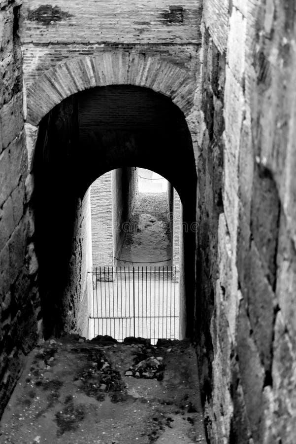 罗马斗兽场走廊 免版税库存图片