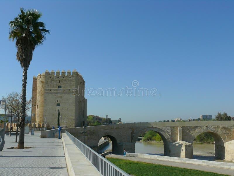 罗马桥梁在科多巴,西班牙 免版税库存照片