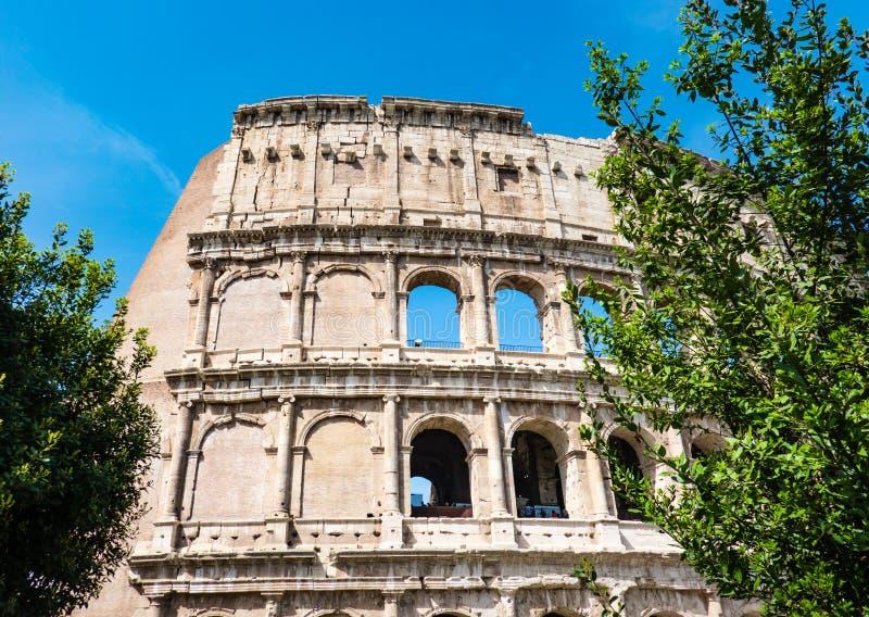 罗马,意大利:亦称伟大的罗马罗马斗兽场大剧场,罗马竞技场Flavian圆形露天剧场,有绿色树的 著名世界lan 免版税库存图片