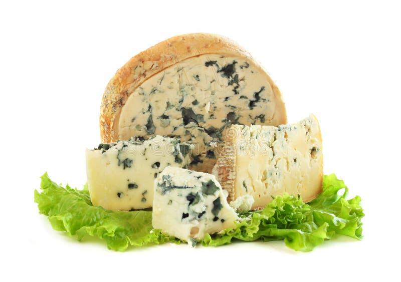 羊乳干酪乳酪 图库摄影