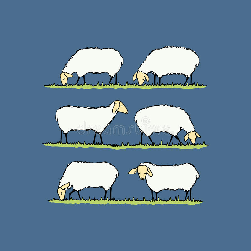 绵羊牧群例证 库存例证