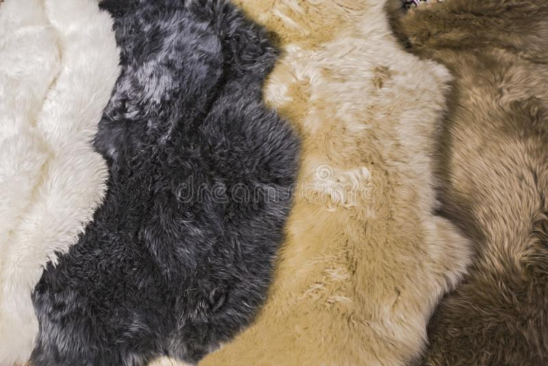 羊皮皮肤的毛皮皮肤室内设计的,白色,黑色,灰棕色,棕色皮肤纹理 图库摄影