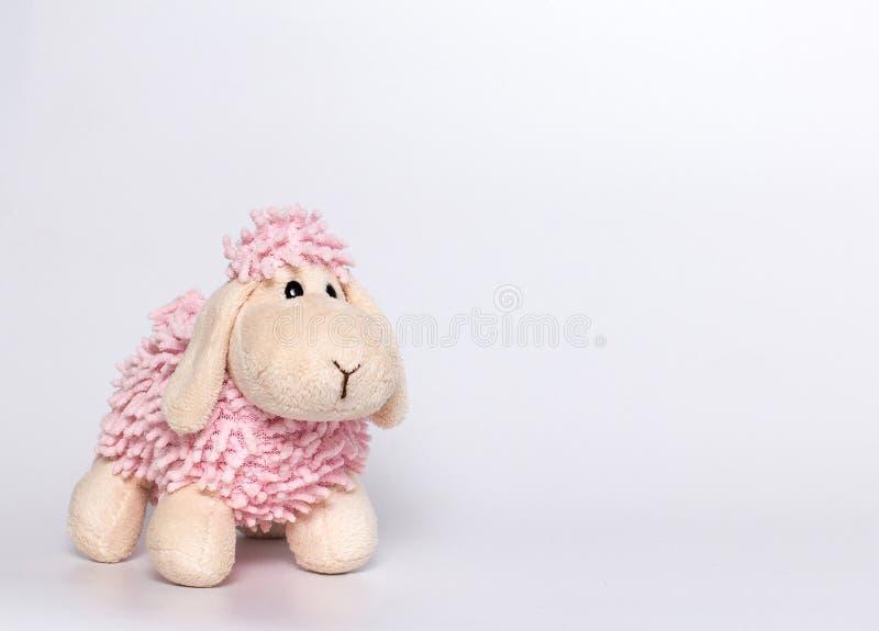 羊羔豪华的玩具 白色和桃红色羊羔 灰色背景 库存图片