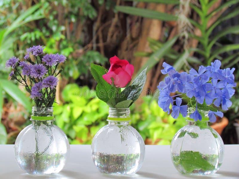 美丽各种各样的颜色花和品种在花瓶集合的 免版税库存照片