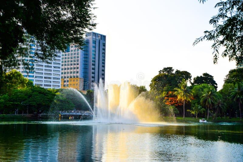 美丽喷泉在公园-在一个大水池中间的喷泉在lumpini公园在晚上,曼谷, 免版税库存照片