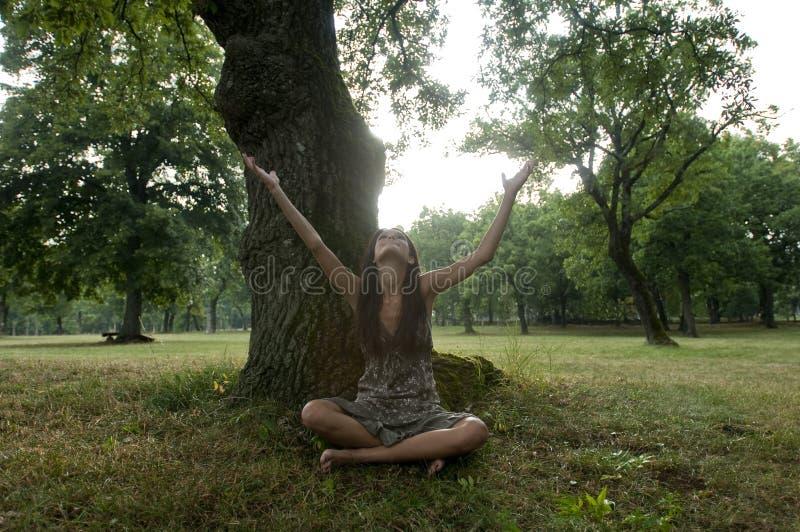 美丽坐结构树在妇女年轻人之下