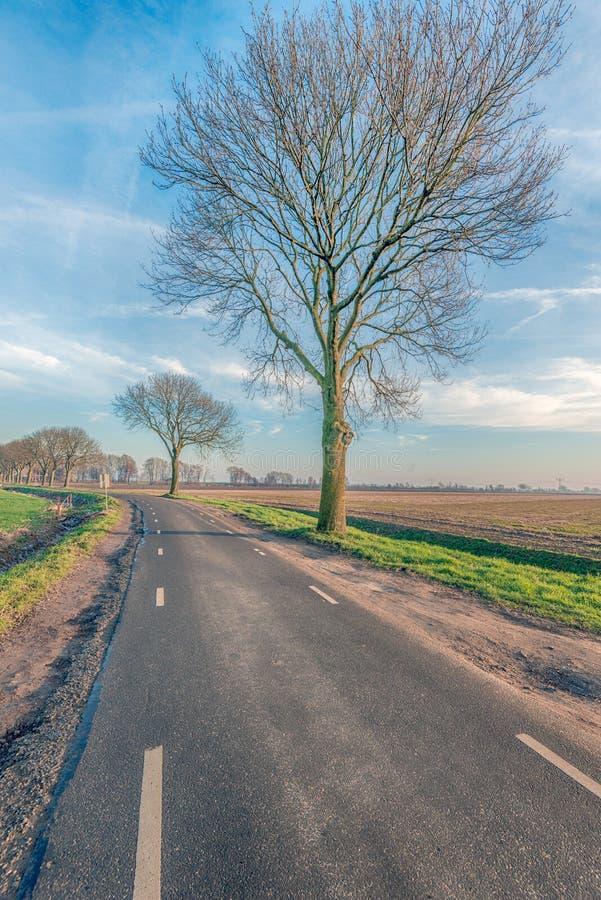美丽如画的弯曲的乡下公路在冬天 免版税库存图片