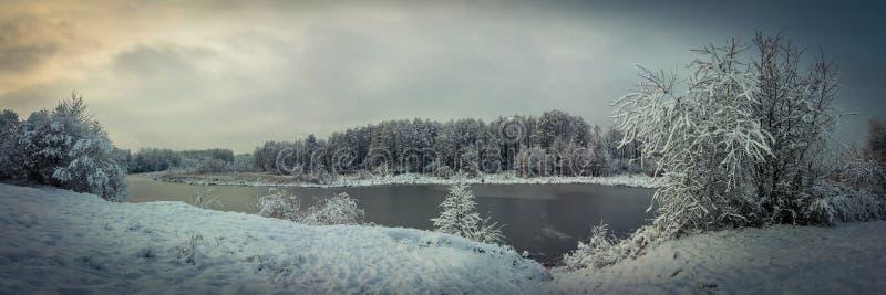 美丽如画的晚上冬天风景 从多雪的多小山海岸线的全景通过沿海树向冻河 库存照片