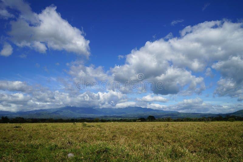 美丽如画的白色云彩和蓝色云彩在一个浩大的领域在巴拿马,明亮的晴天 库存照片