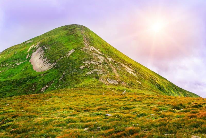 美丽如画的喀尔巴阡山脉环境美化,登上Hoverla,乌克兰看法  图库摄影