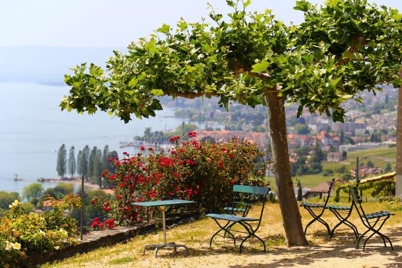 美丽如画的大阳台有在葡萄园的看法在莱芒湖,瑞士附近 免版税库存图片