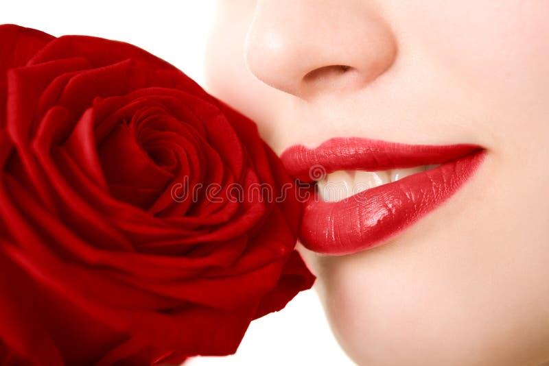 美丽接近的女孩红色玫瑰色  免版税库存图片