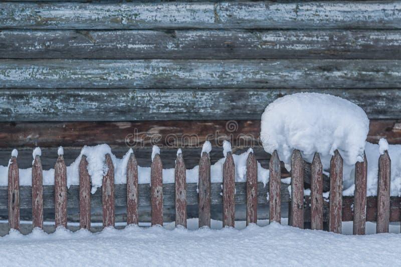 美丽的丛在木篱芭的雪有一个多雪的背景的 有前面美丽的木木栅 圣诞节 免版税库存照片