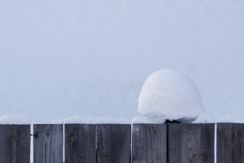 美丽的丛在木篱芭的雪有多雪的背景 您圣诞节消息准备好的纹理 您圣诞节消息准备好的纹理 免版税图库摄影