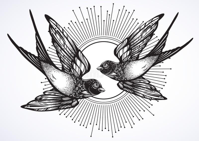 美丽的两只飞行的燕子鸟的葡萄酒减速火箭的样式例证 在白色隔绝的手拉的传染媒介艺术品 向量例证