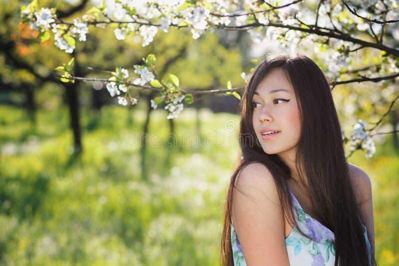 美丽的中国妇女春天画象 库存图片