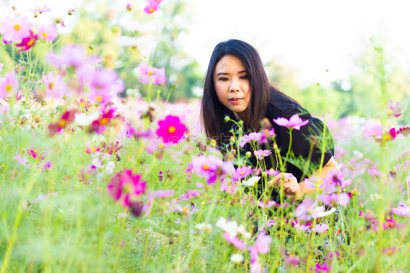 美丽的亚洲人放松妇女愉快微笑在桃红色波斯菊花 库存图片