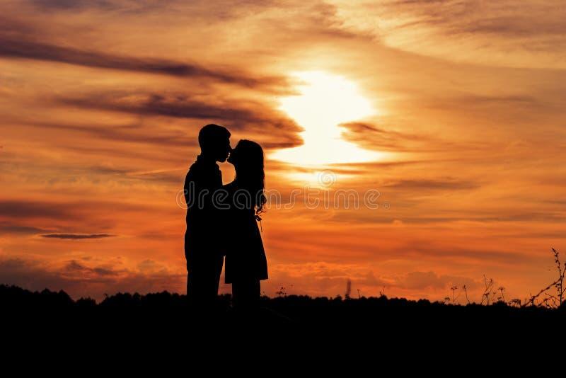 美丽的亲吻在日落的树荫爱恋的愉快的夫妇在温暖的夏日领域 免版税库存图片