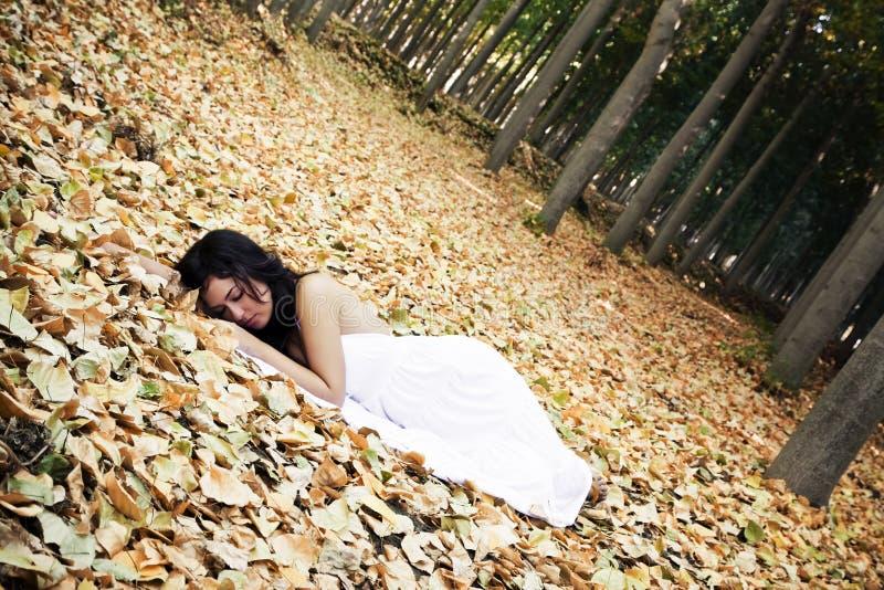 美丽的休眠的妇女 库存照片