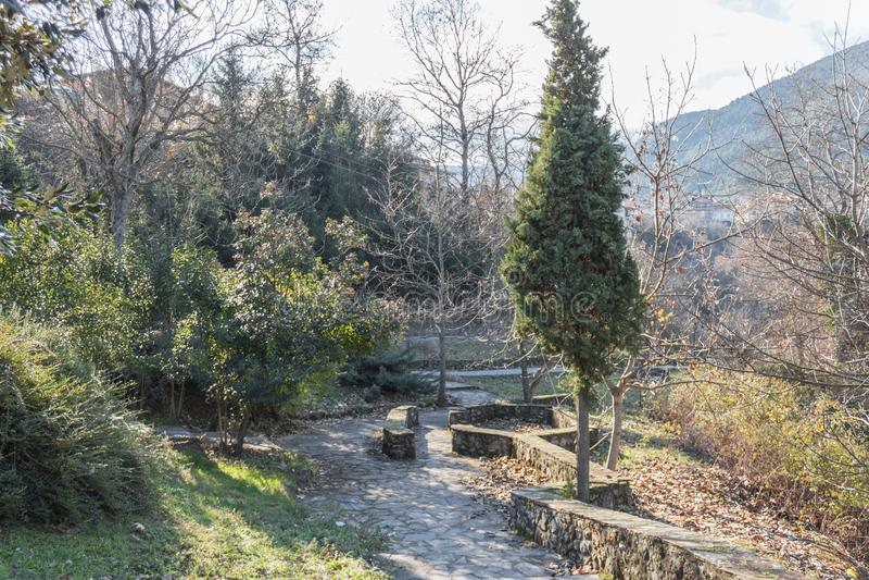 美丽的公园在冬天好日子 库存照片