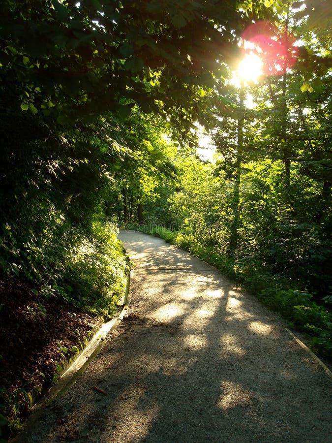 美丽的公园在卢布尔雅那 图库摄影